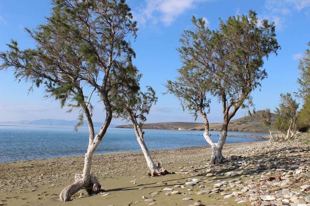 Tinos Grecia arrampicata spiaggia