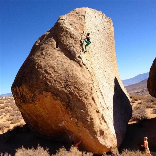 Nina Williams arrampicata boulder Ambrosia Bishop