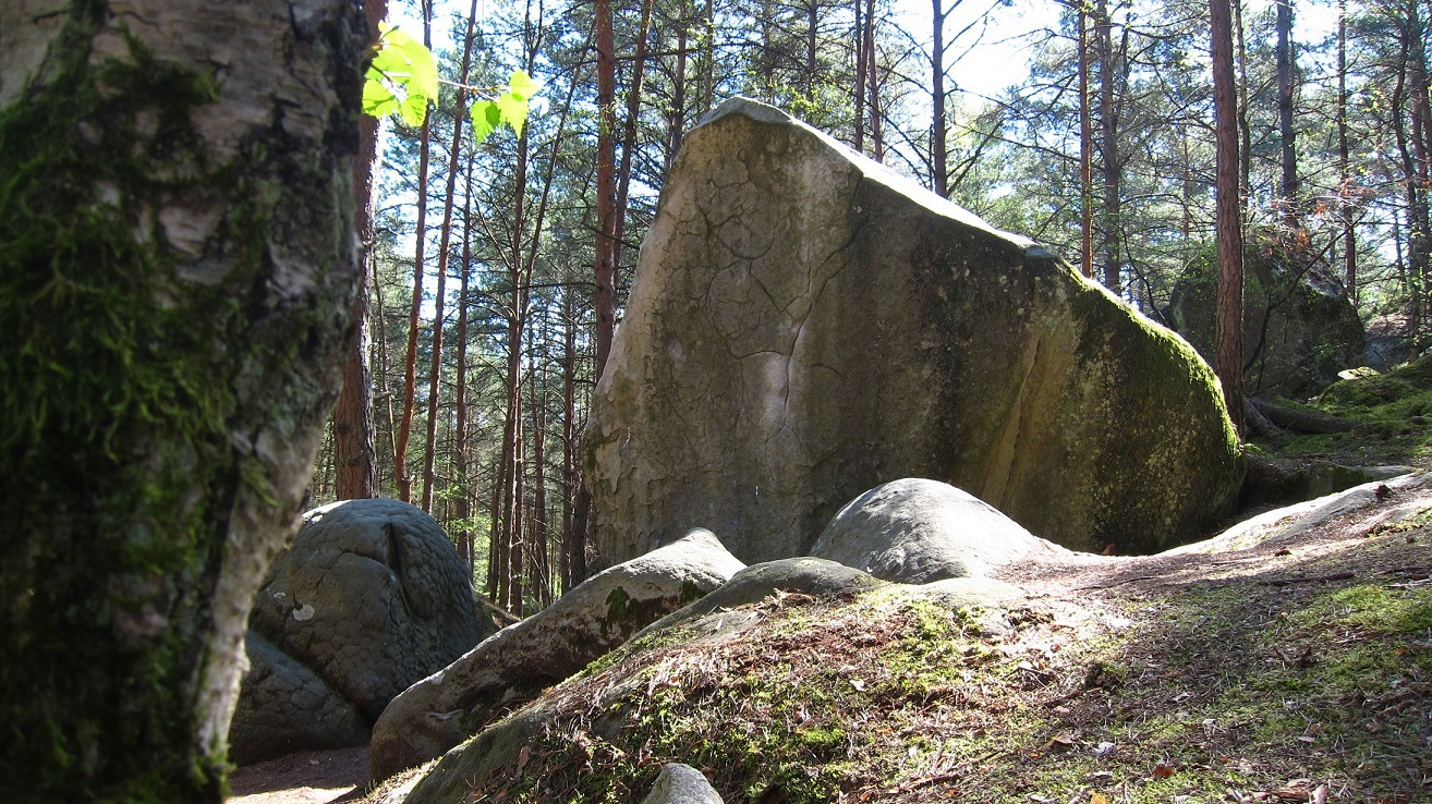 Oliunìd is bloc: boulder a Fontainebleau