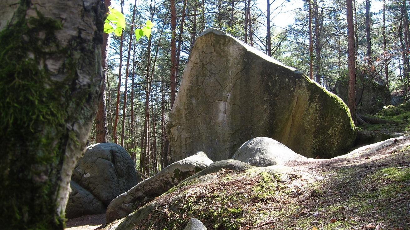 Oliunìd is bloc: boulder a Fontainebleau