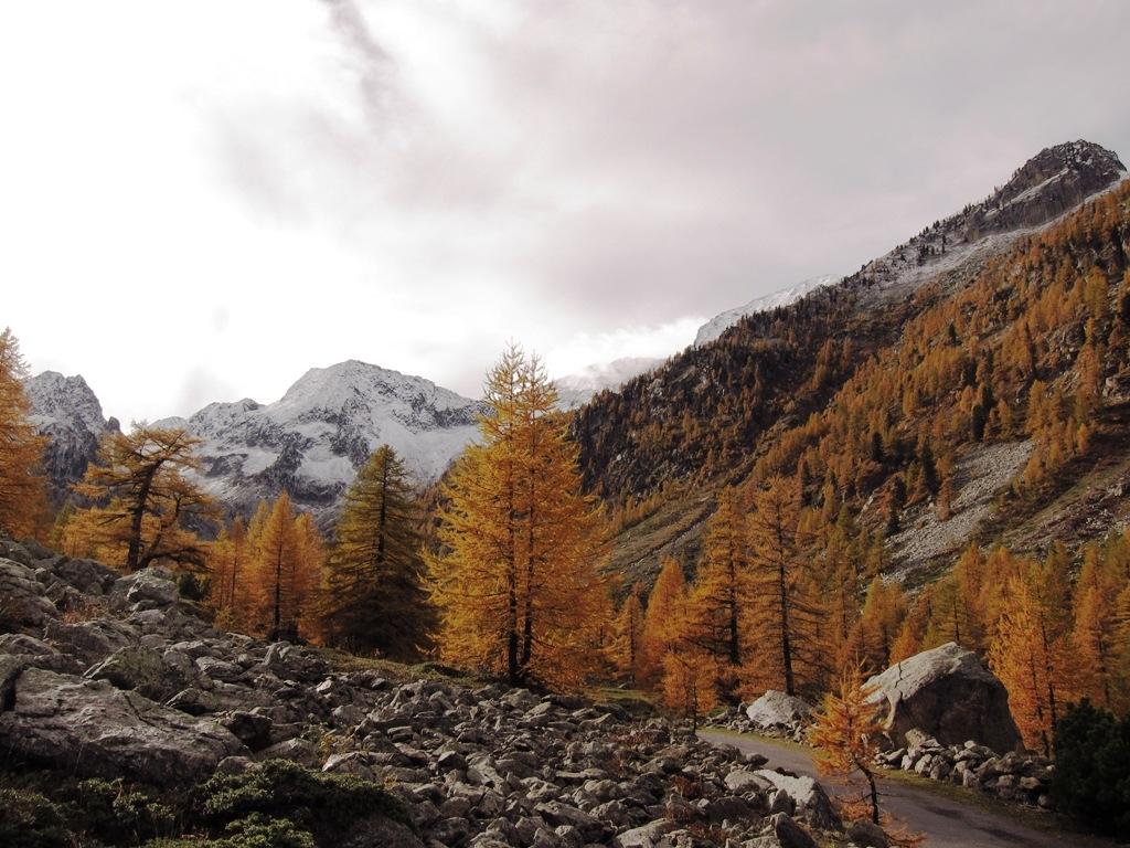Arrampicata boulder ailefroide francia paesaggio